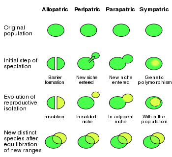 350px-speciation_modes-svg