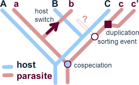 Host-Parasite Coevolution
